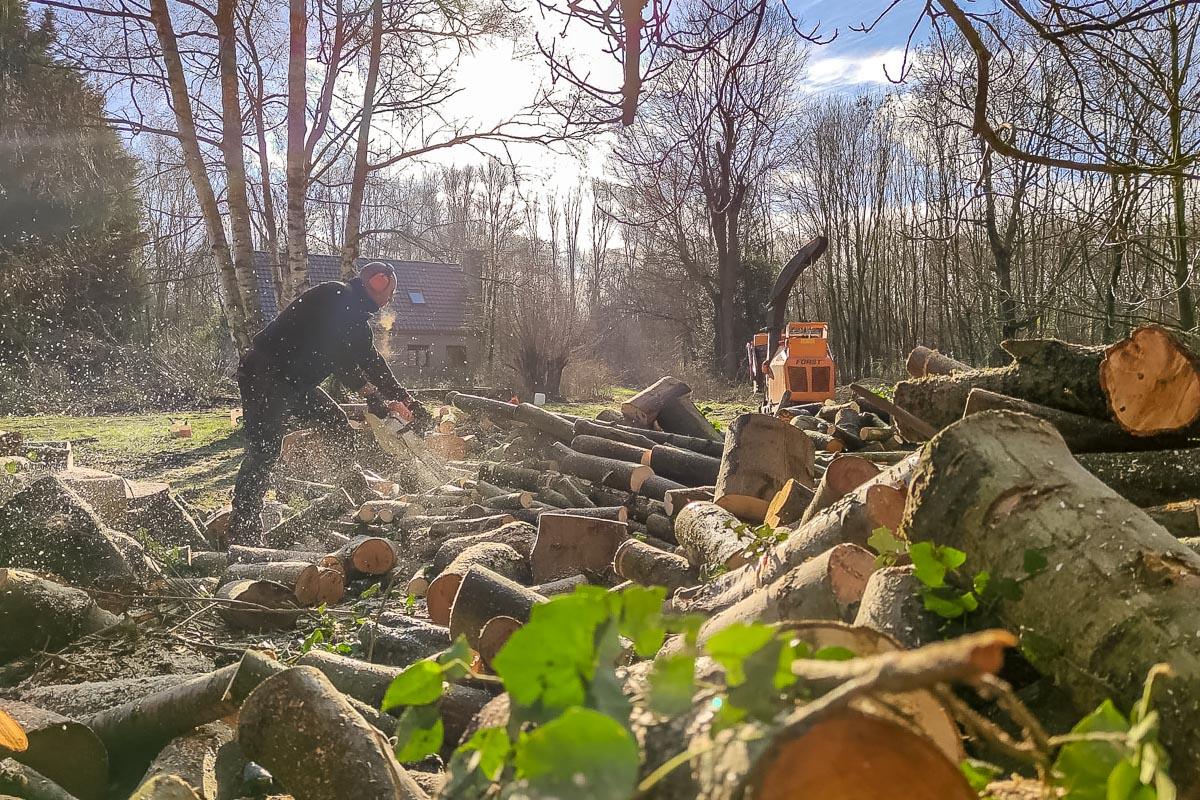 Michel Lemaire découpe un tronc d'arbre